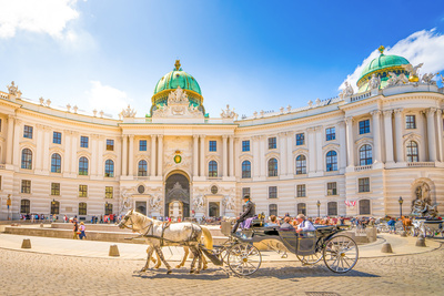 tour-in-pullman-vienna